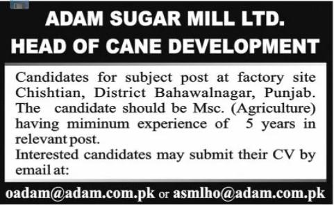 Head of Cane Development Job 2021 in Bahawalnagar