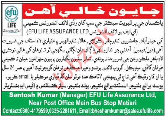 EFU Life Assurance Limited Matiari Jobs 2021