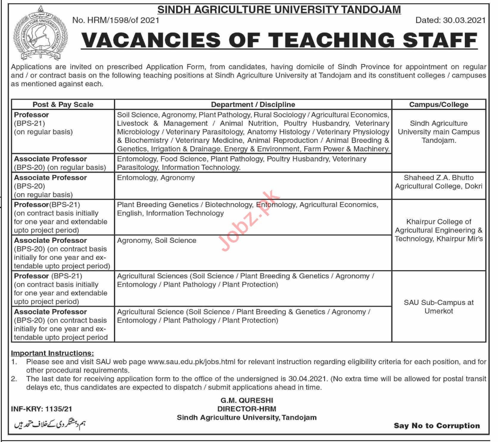 Sindh Agriculture University SAU Tandojam Faculty Jobs 2021