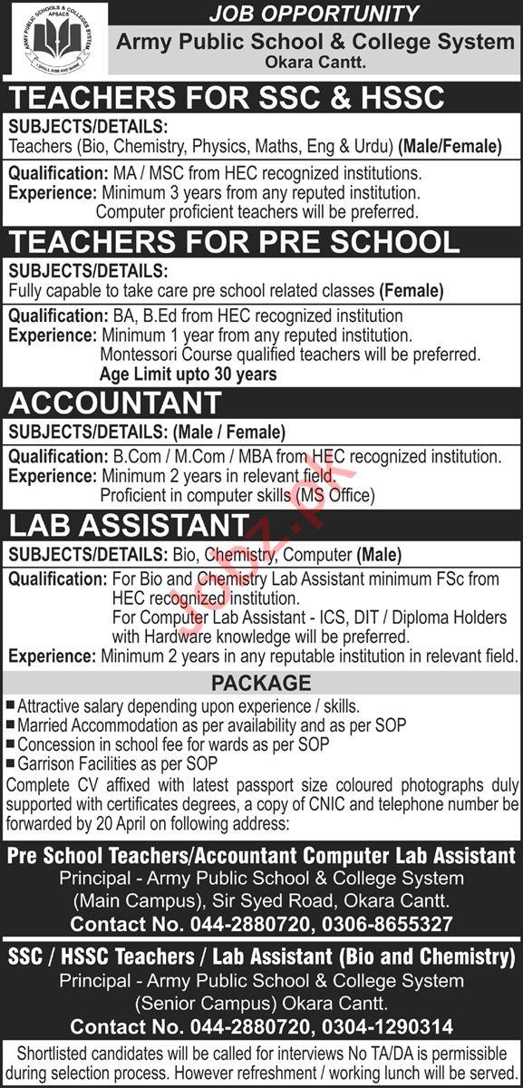Army Public School & College APS&C Okara Cantt Jobs 2021