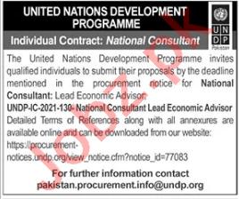 UNDP Jobs 2021 for National Consultant Lead Economic Advisor