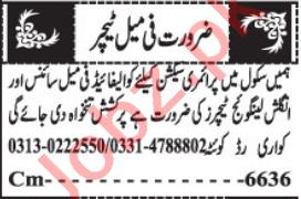 Office Boy & Female Teacher Jobs 2021 in Quetta