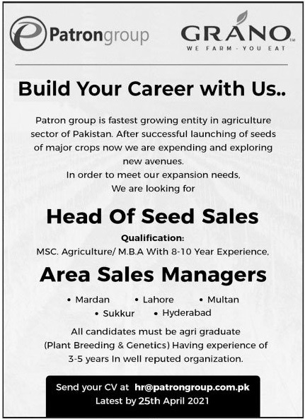 Patron Group Jobs 2021 For Sales Staff