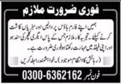 Farm House Job 2021 in Lahore