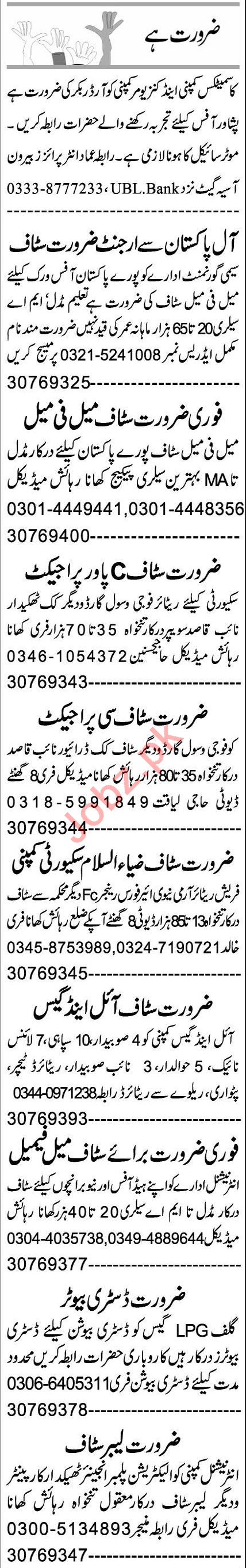 Software Engineer & Web Developer Jobs 2021 in Peshawar