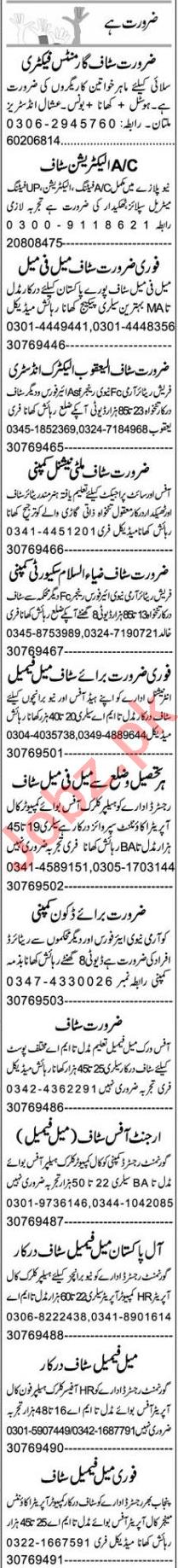 Purchasing Assistant & Web Developer Jobs 2021 in Multan