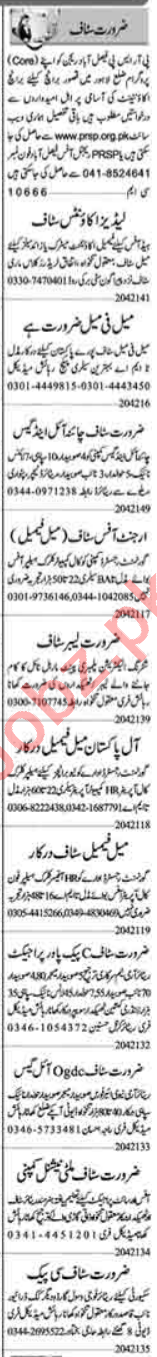 Assistant Manager & Sales Officer Jobs 2021 in Lahore
