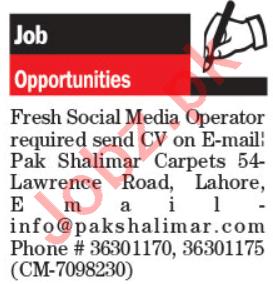 Pak Shalimar Carpets Jobs 2021 for Social Media Coordinator