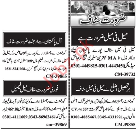 Web Developer & Software Engineer Jobs 2021 in Islamabad