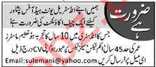Chief Accountant & Accountant Jobs 2021 in Peshawar