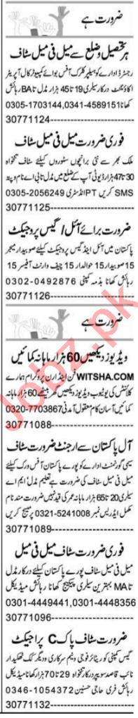 Auto CAD Operator & PHP Developer Jobs 2021 in Peshawar