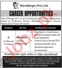 Field Monitor Jobs 2021 in MicroMerger Peshawar