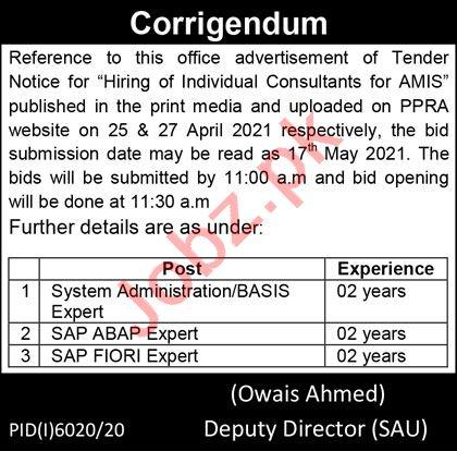 South Asian University SAU Lahore Jobs 2021 SAP ABAP Expert