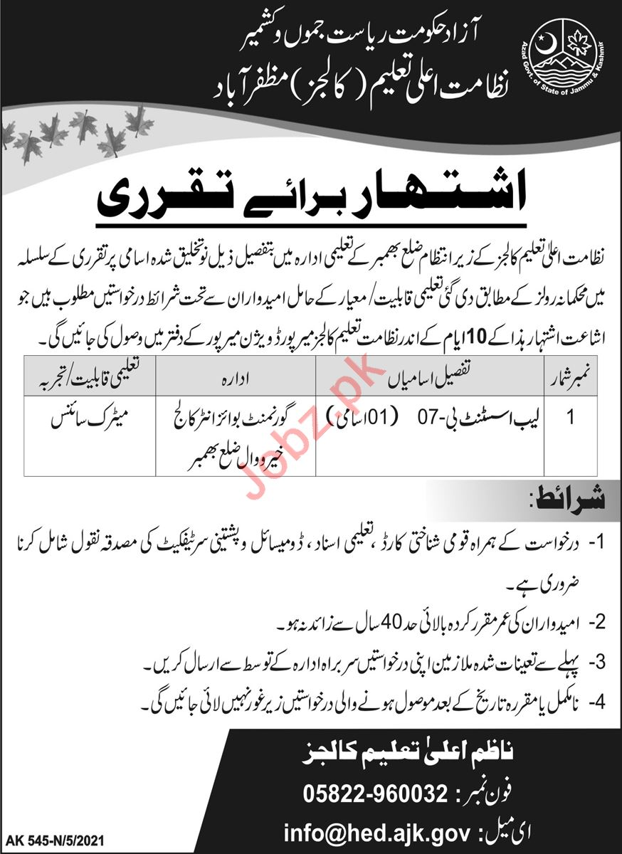 Higher Education Department Colleges Bhimber Jobs 2021