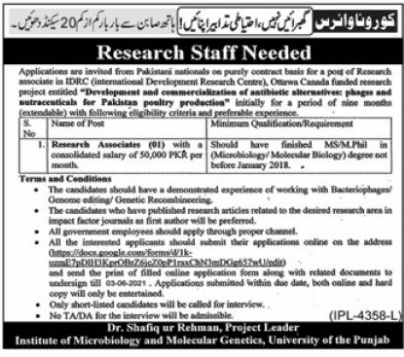 University of Punjab Jobs 2021 in Lahore