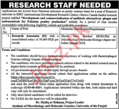 Institute of Microbiology & Molecular Genetics PU Jobs 2021