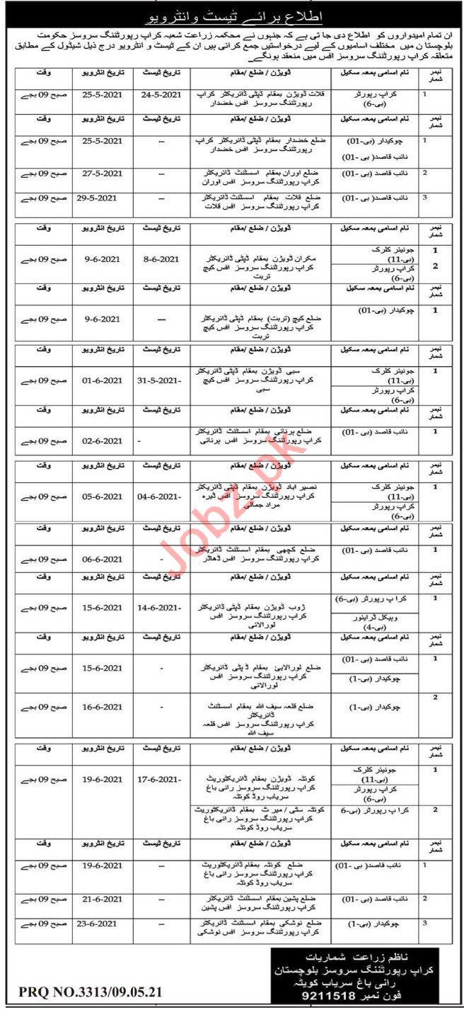 Crop Reporting Services Balochistan Jobs 2021