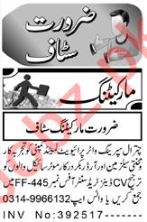 Marketing Manager & Salesman Jobs 2021 in Peshawar