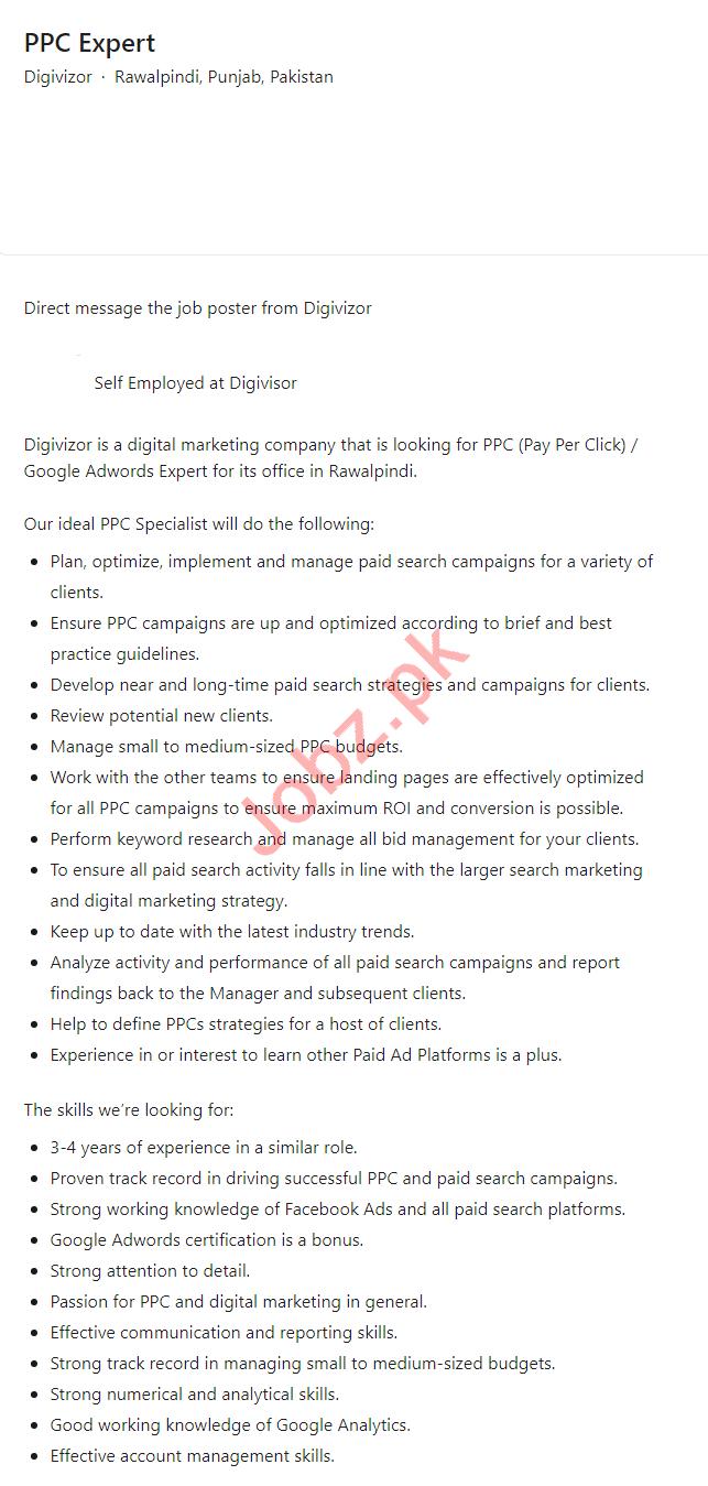 Digivizor Rawalpindi Jobs 2021 for PPC Expert
