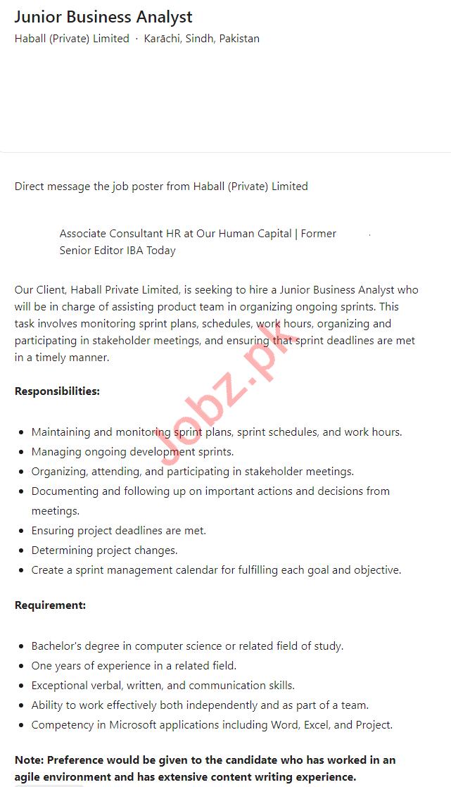Haball Karachi Jobs 2021 for Junior Business Analyst