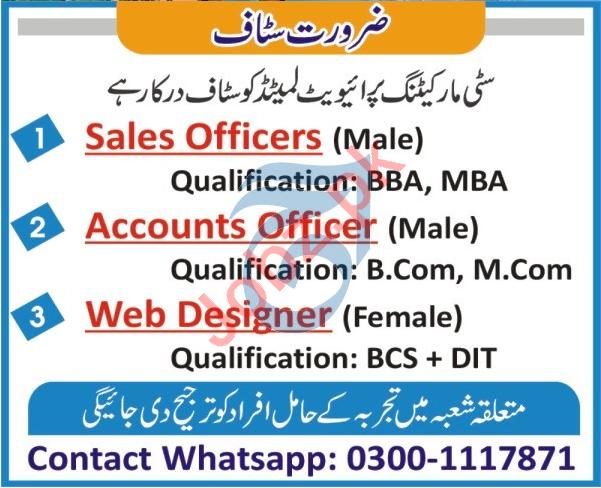 City Marketing Peshawar Jobs 2021 for Accounts Officers