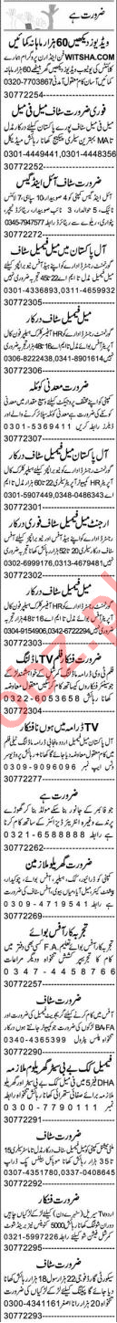 Branch Manager & HR Officer Jobs 2021 in Lahore