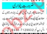 Patwari & Finance Officer Jobs 2021 in Peshawar