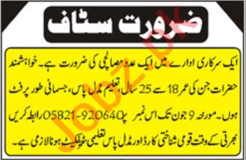 Public Sector Organization Azad Kashmir Jobs 2021