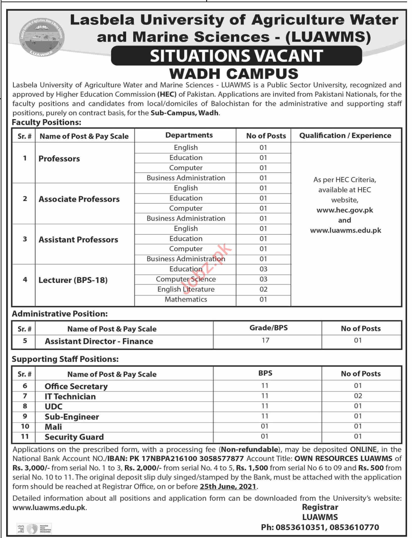 LUAWMS University Wadh Campus Jobs 2021 for Professors