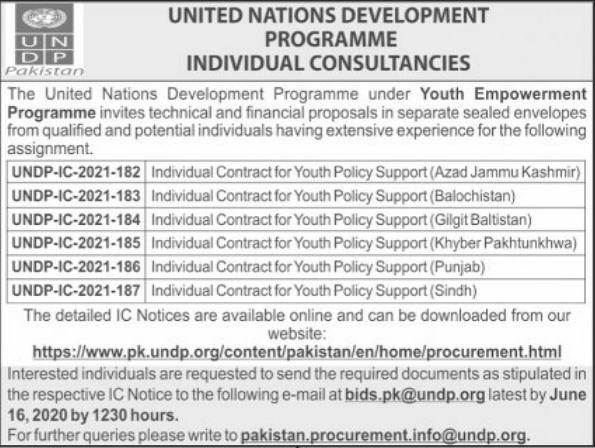 Consultant Jobs in United Nations Development Program UNDP