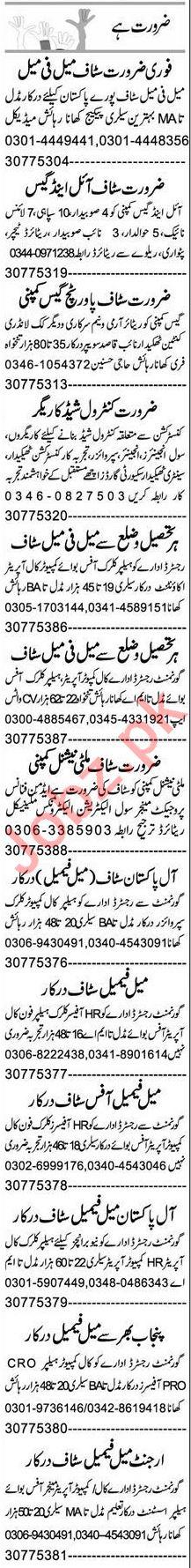 Graphic Designer & Software Engineer Jobs 2021 in Multan