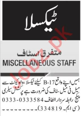 Jang Sunday Taxila Classified Ads 13 June 2021