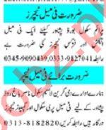 Mashriq Sunday Classified Ads 13 June 2021 for Teachers