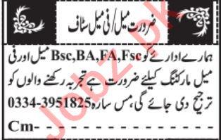 Sales Officer & Salesman Jobs 2021 in Quetta