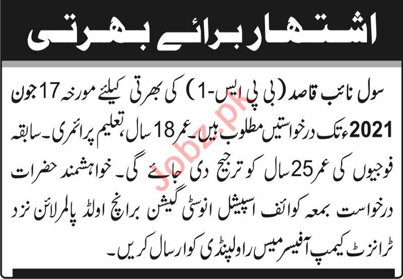 Special Investigation Branch Transit Camp Rawalpindi Jobs