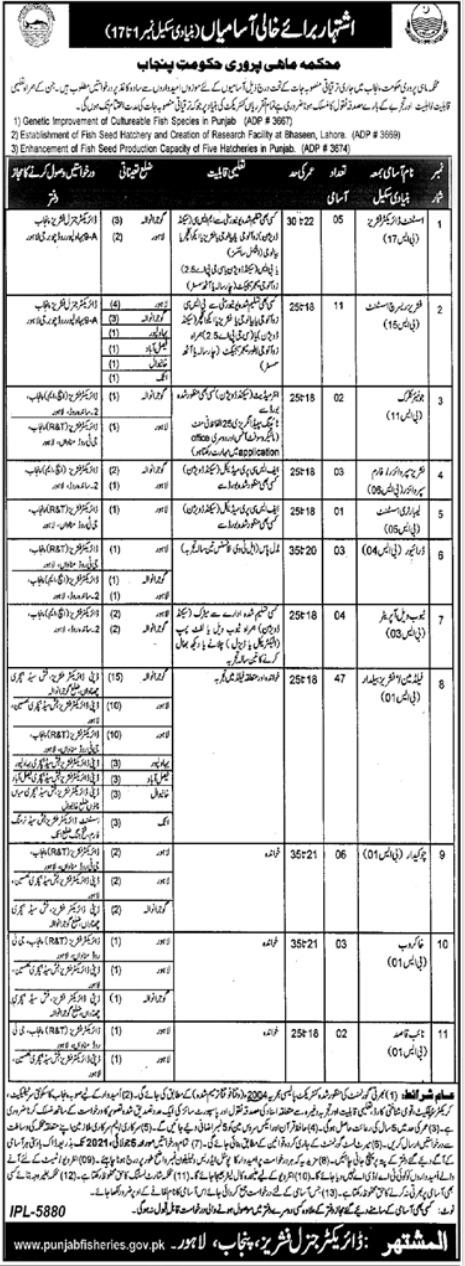 Fisheries Department Lahore Jobs 2021