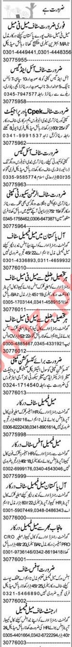 Account Manager & HR Officer Jobs 2021 in Faisalabad