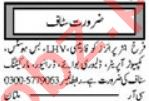 Bus Hostess & Delivery Boy Jobs 2021 in Multan