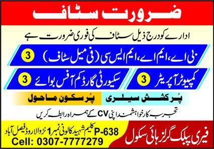 Fairy Public Girls High School Jobs in Faisalabad
