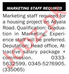 The News Sunday Classified Ads 20 June 2021 for Marketing