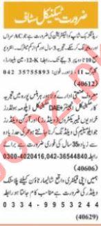 Nawaiwaqt Sunday Classified Ads 20 June 2021 for Technical