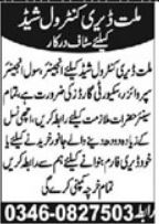 Millat Dairy Control Shed Security & Engineering Jobs 2021
