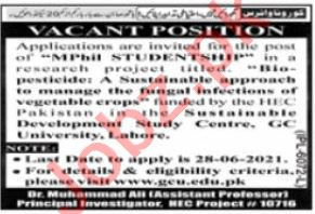 Government College GC University Lahore Jobs 2021