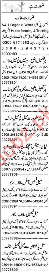 Telephone Operator & Admin Officer Jobs 2021 in Multan