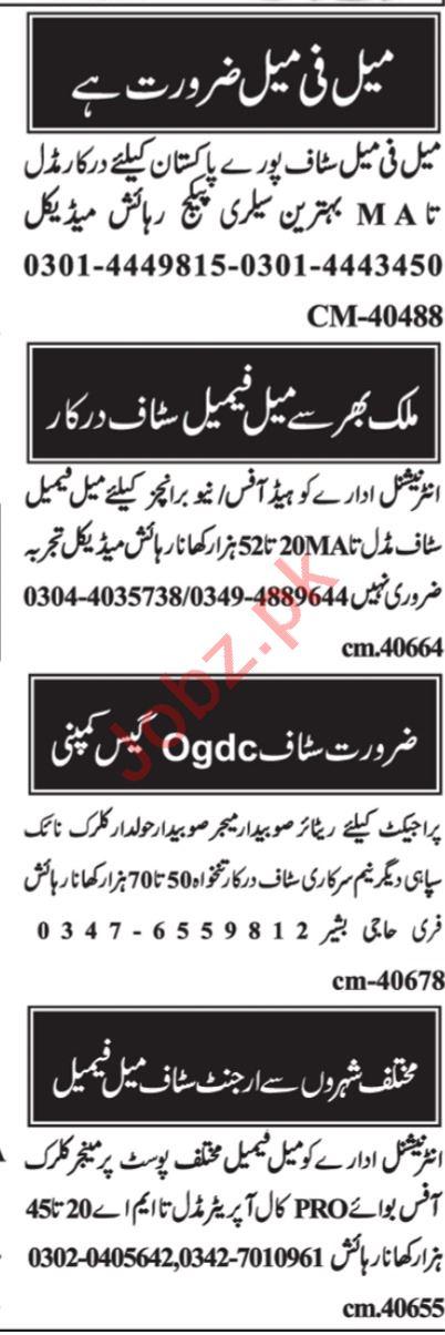Web Developer & Computer Programmer Jobs 2021 in Islamabad