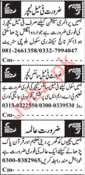 Primary Teacher & Section Head Jobs 2021 in Quetta