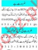 Female Receptionist & HR Officer Jobs 2021 in Peshawar