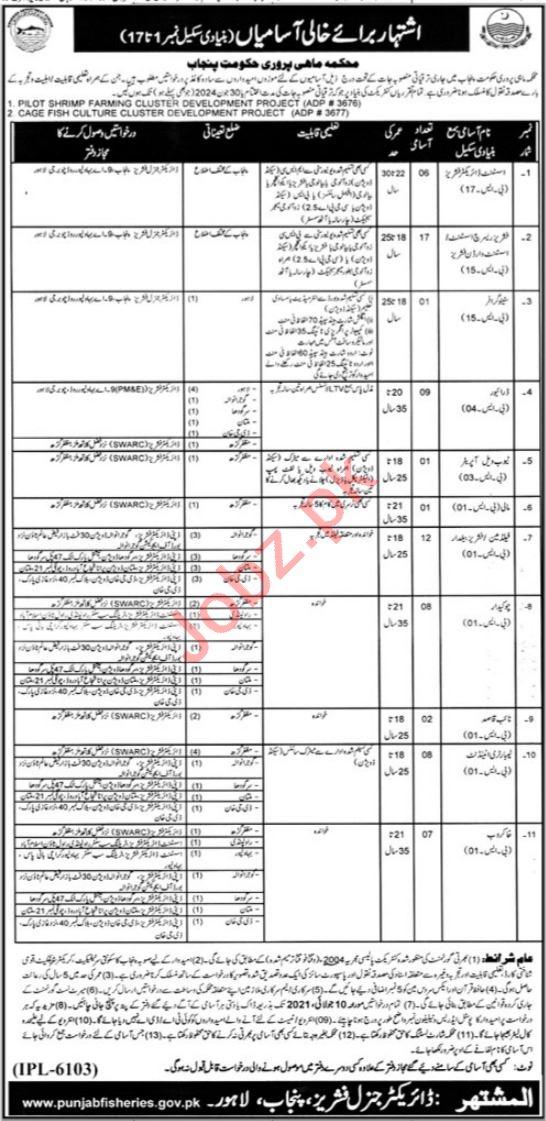 Assistant Director Jobs 2021 in Fisheries Department Punjab