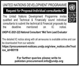 UNDP Consultant Jobs 2021