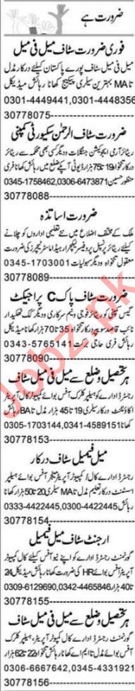 Graphic Designer & Computer Programmer Jobs 2021 in Peshawar